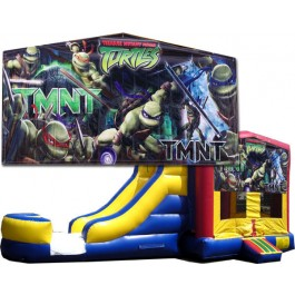 Teenage Mutant Ninja Turtles (TMNT) 2 Lane combo (Wet or Dry)