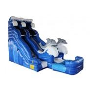 20ft Dolphin Wet/Dry Slide