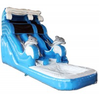 18ft Dolphin Dual Lane Wet/Dry Slide